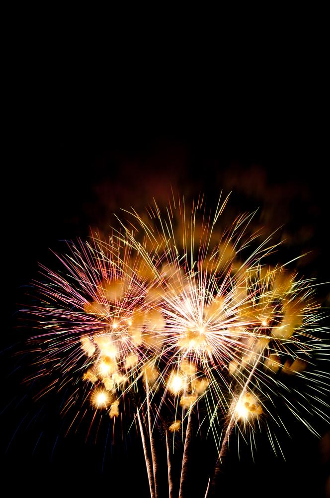 Fireworks finale flower