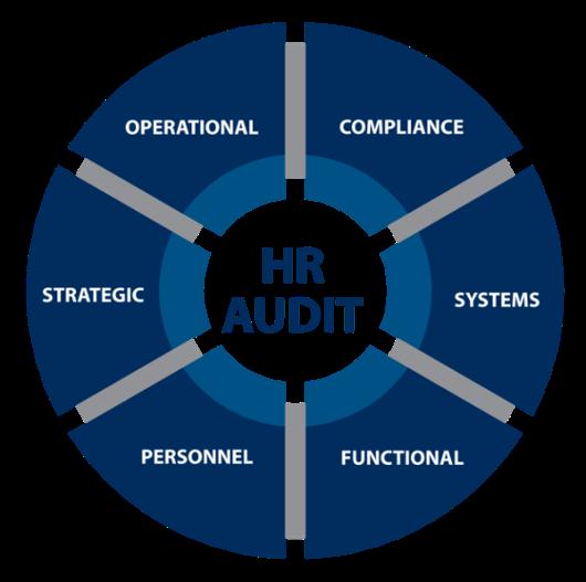 Enhance HR's Future with an HR Audit