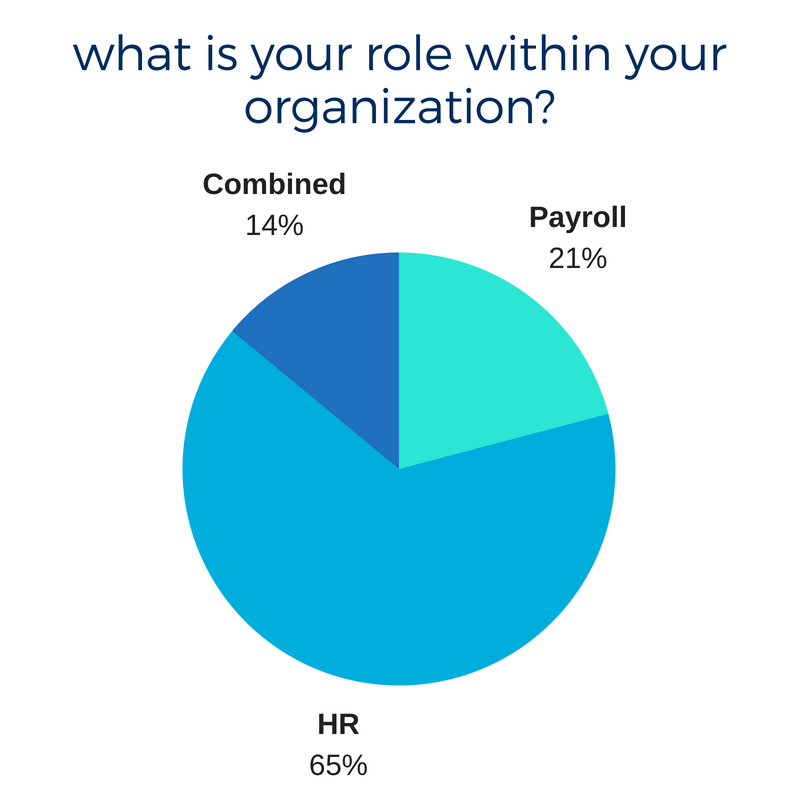 what is your role within your organization_